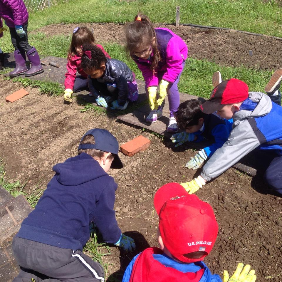 Planting seeds in our vegetable garden
