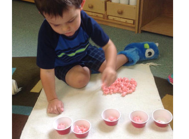 Canton Preschool Counting Pigs