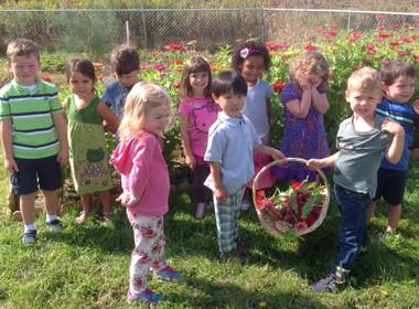 Canton Preschool Flower Picking