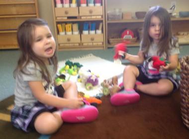 Canton Preschool Matching Veggies