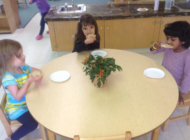 Canton Preschool Mini Pizzas