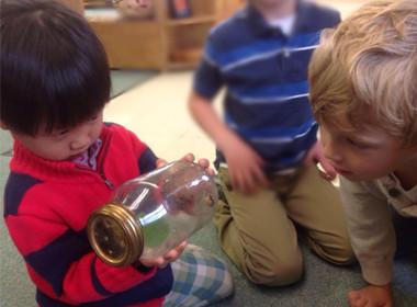 Canton Preschool Science Spider
