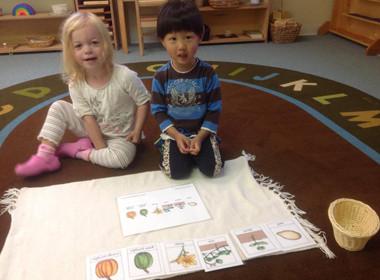 Canton Preschool Sequencing